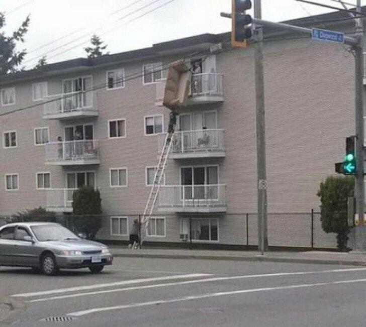 Столько всего занимательного можно придумать, если у тебя есть лестница