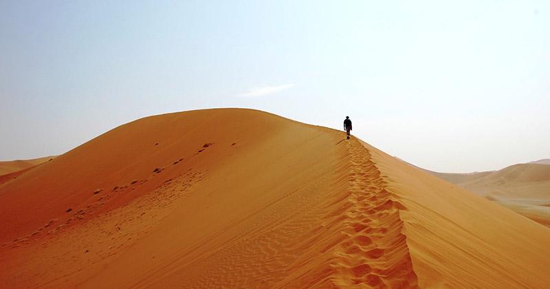 Все то, что вы не знали о самой большой жаркой пустыне планеты