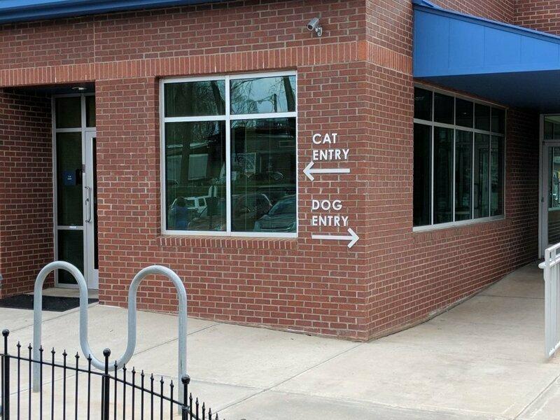Ветеринарная клиника с двумя входами для владельцев кошек и собак