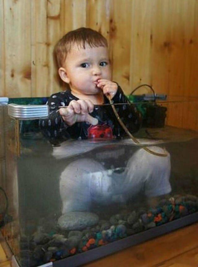 Сейчас попробую, что пьют рыбки