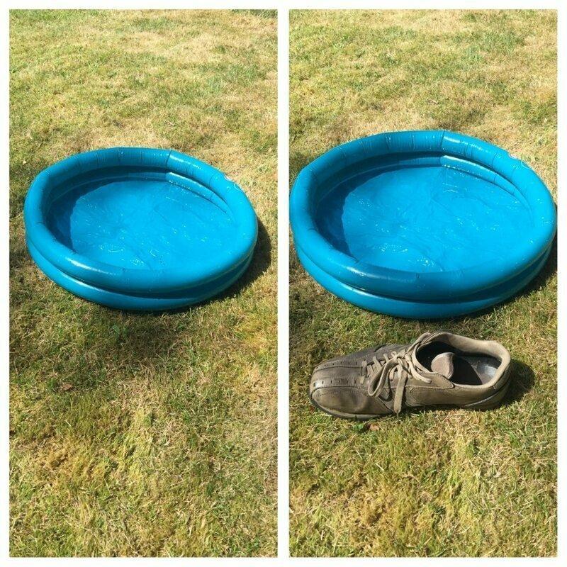 В этом надувном бассейне сможет поплавать мышь