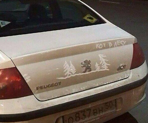 Когда лень мыть машину, проявляется творчество: кот в лесу автомобильные приколы, автоюмор, надпись на авто, наклейка на авто, фото