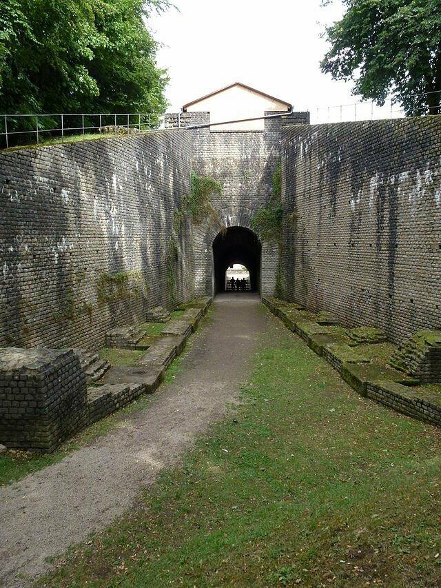 Вомитории гладиаторы, древний рим, заблуждение, интересно, история, мифы, плебеи, факт