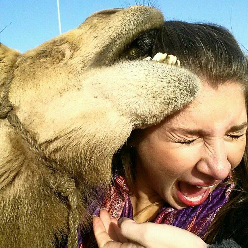 Правило 6: не трогайте диких животных застрял, люди, маразмы, неловкие ситуации, прикол, фейл, фото, эволюция, юмор