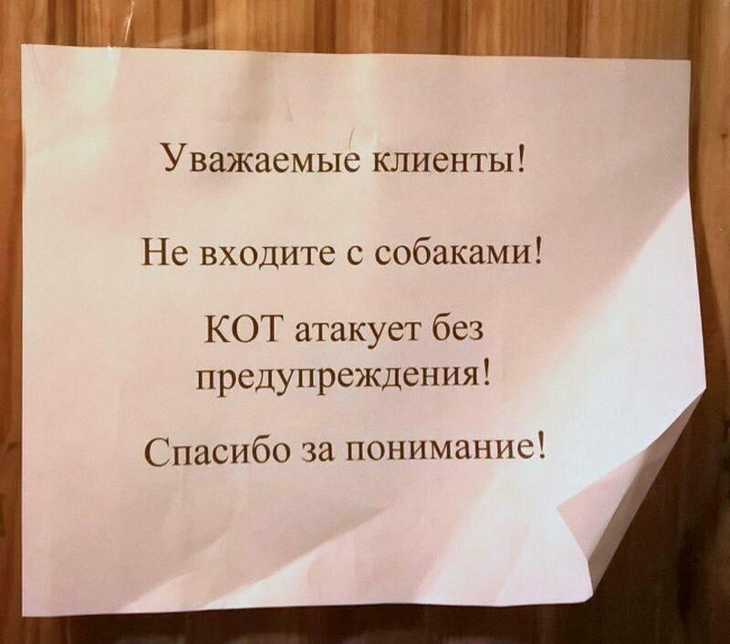 Котэ атакуе! возмущение, надпись, объявление, правила, прикол, россия, туалет, юмор