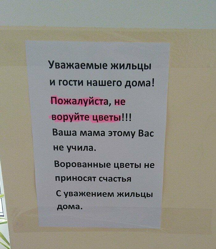 Вежливо и совестливо возмущение, надпись, объявление, правила, прикол, россия, туалет, юмор