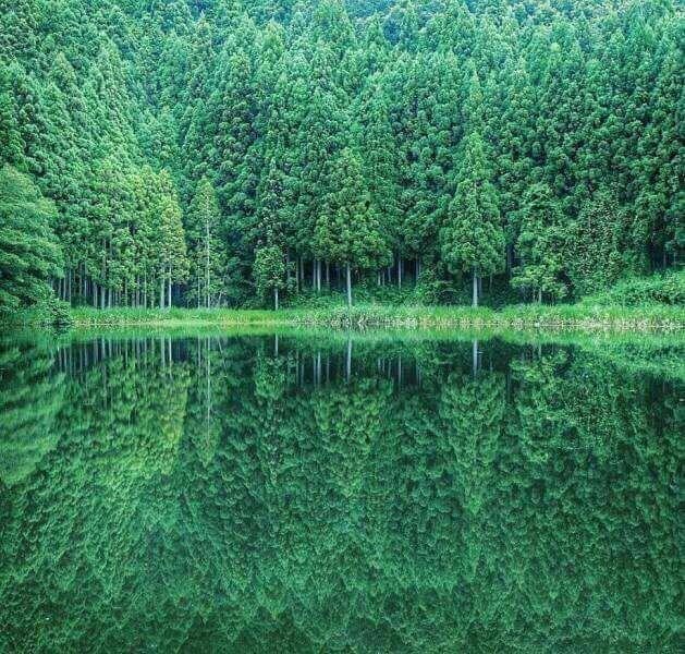 Природа идеальна без фотошопа