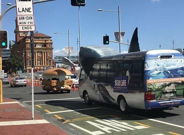 Акула в погоне за филе-о-фиш автомобильное, водители, водители ада, дорожное, на дороге, необычные автомобили, странные автомобили, юмор