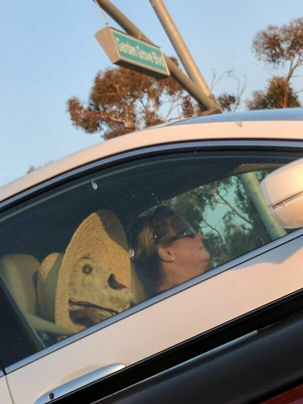 Ой! автомобильное, водители, водители ада, дорожное, на дороге, необычные автомобили, странные автомобили, юмор