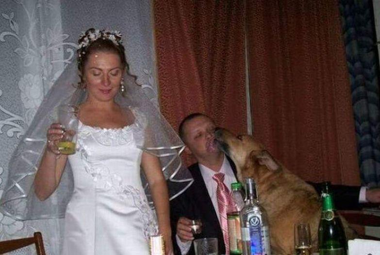 Горько! деревня, жених, невеста, прикол, свадьба, село, смех, юмор