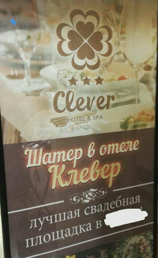 """Слово """"клевер"""" по-английски пишется иначе"""