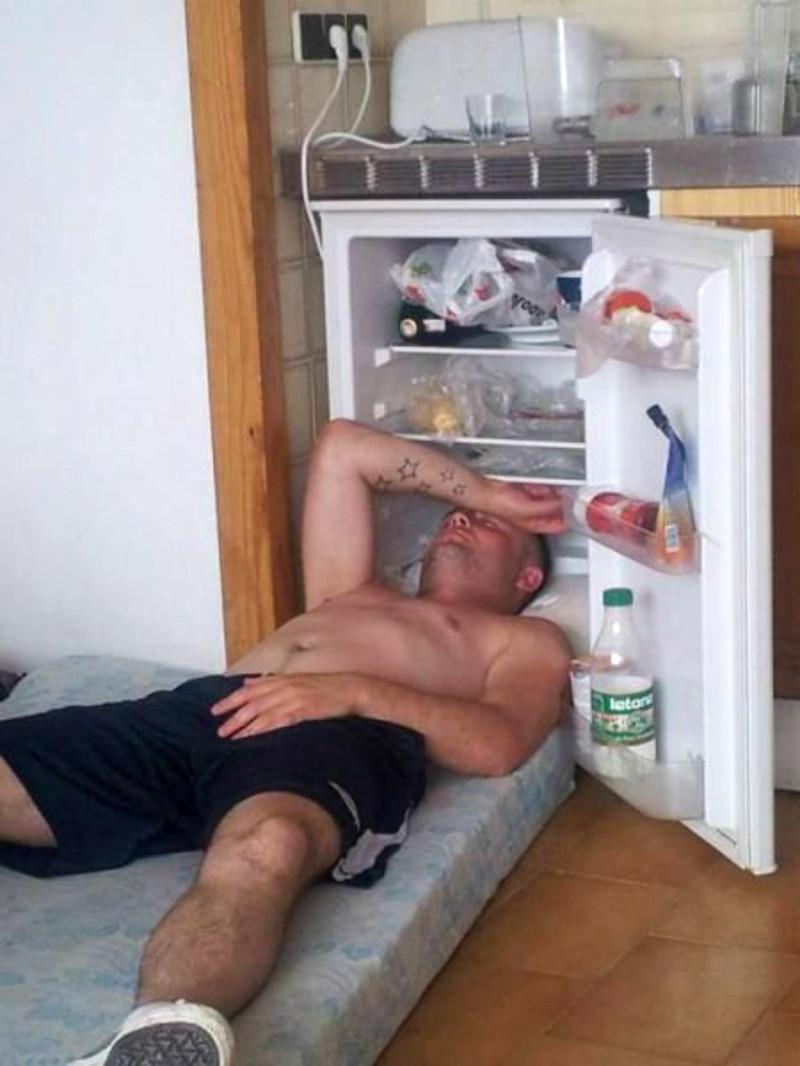 Холодос - мой друг и спаситель жара, животные, лето, прикол, советы, холодильник, юмор