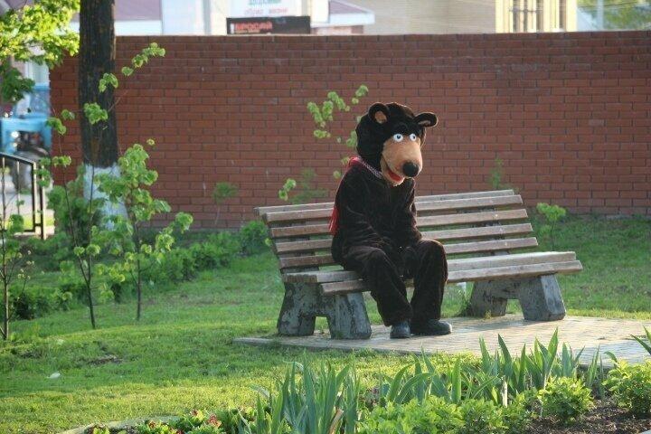 8. История одного медведя добро, доброта, искренность, не все потеряно, отношение, помощь, россия
