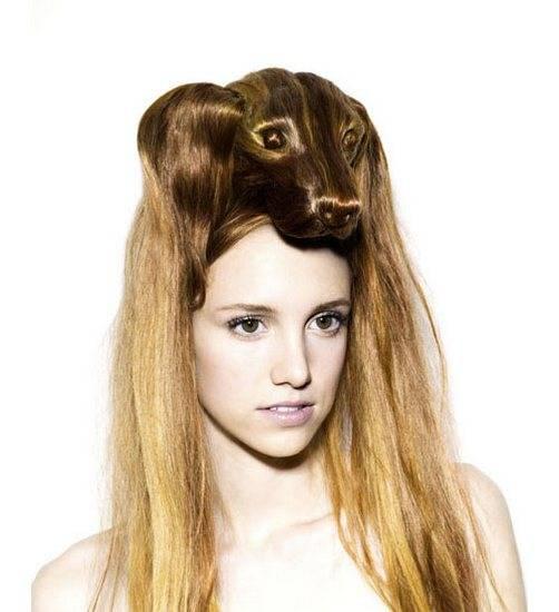 Какая милая хозяйка волосы, креатив, прически, сделайте мне красиво, смешно, юмор