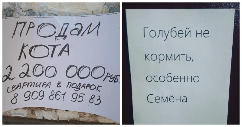 О, эти бесподобные объявления от самых веселых и находчивых в россии, объявления, прикол, смешные объявления, фото