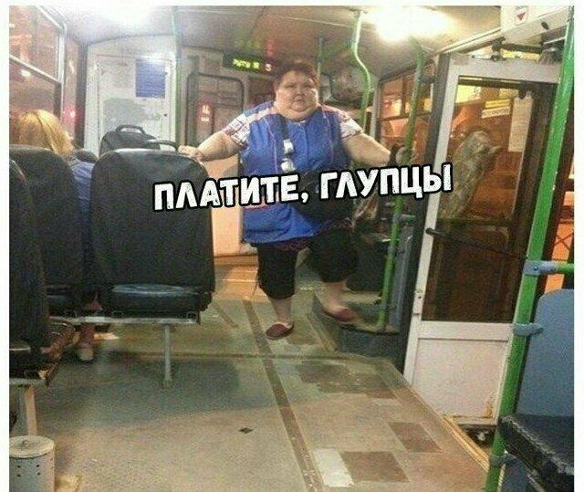 На что только не насмотришься в общественном транспорте автобус, маршрутка, общественный транспорт, прикол, юмор