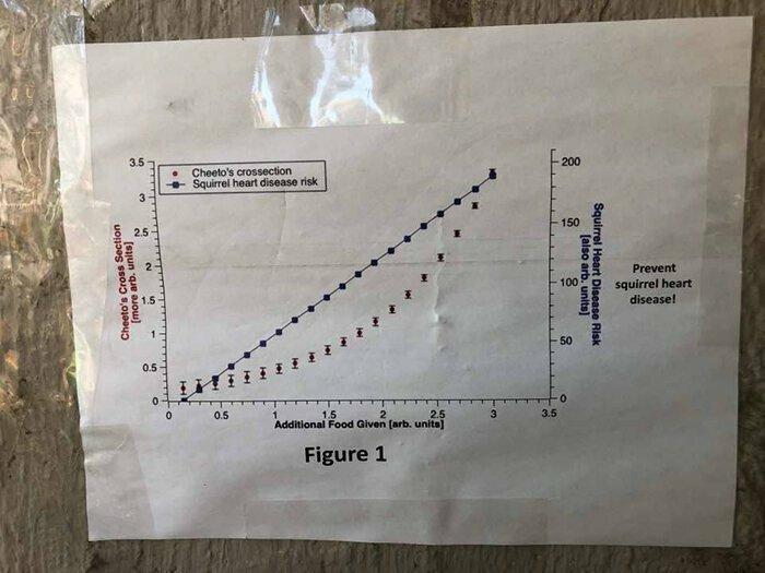 График 1: корреляция между количеством дополнительной еды для Чито и уровнем заболеваний сердца среди белок