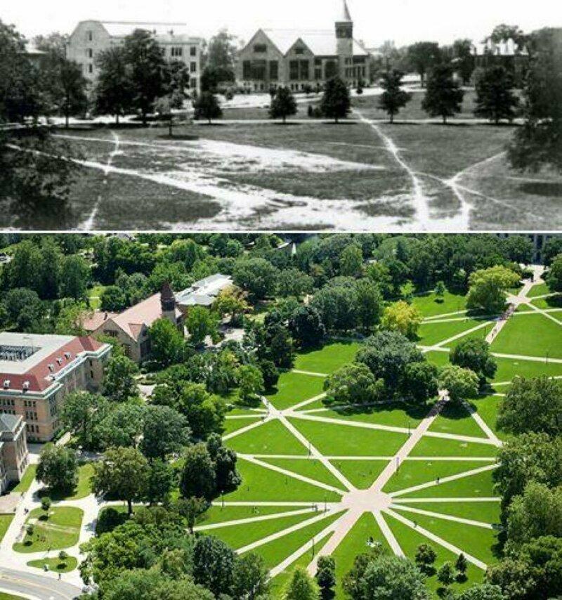 В Университете штата Огайо есть дорожки, но выложены они были на основе маршрутов студентов, которые ходили там когда-то