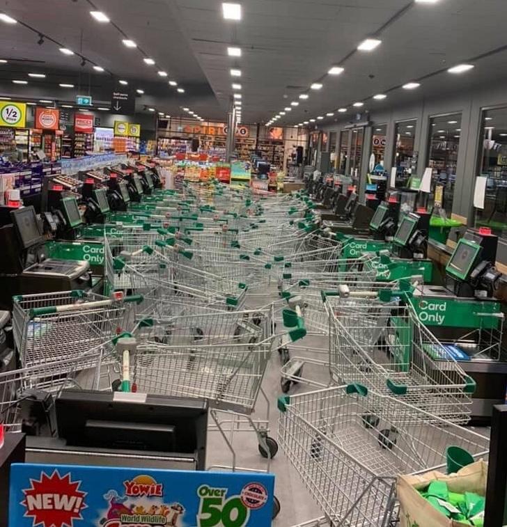 Свиньи в супермаркете