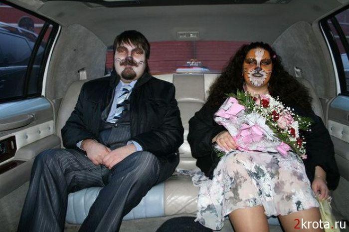 В ЗАГС или зоопарк? влюблённые, прикол, свадьба, юмор