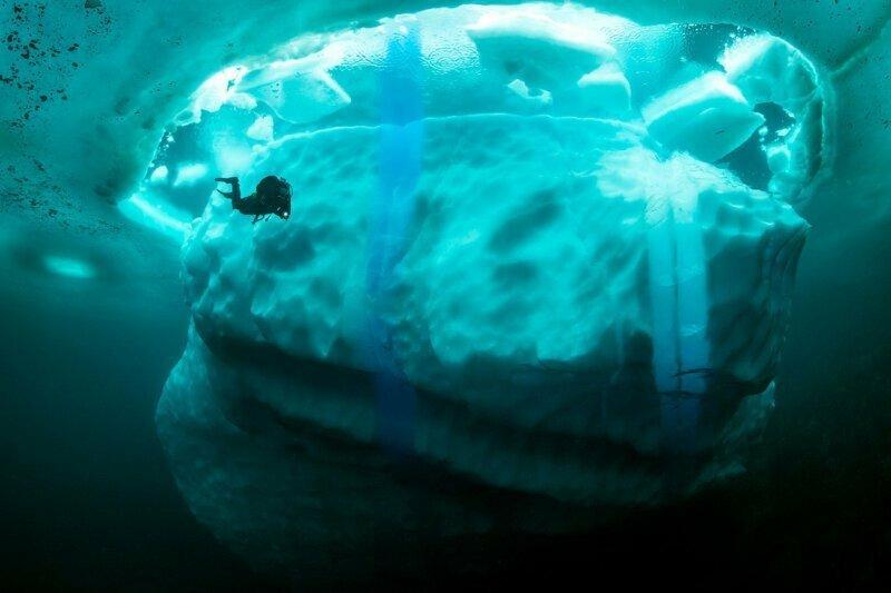 В мире создан на деньги от 17-ти стран,  Международный ледовый патруль, который следит за передвижениями айсбергов айсберг, интересное, лед, под водой, природа