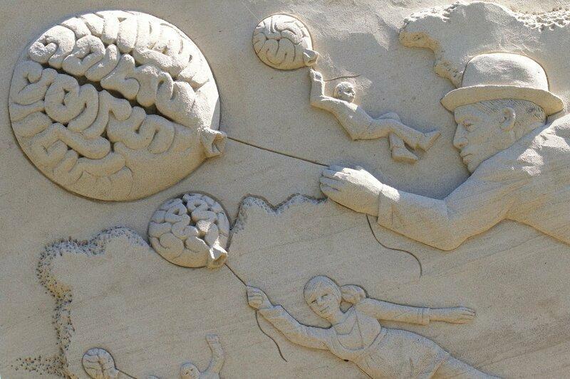 Мозг бесполезное, животные, знания, лечение, факты, черепахи