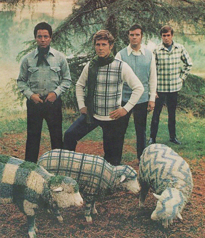 Мода на овец