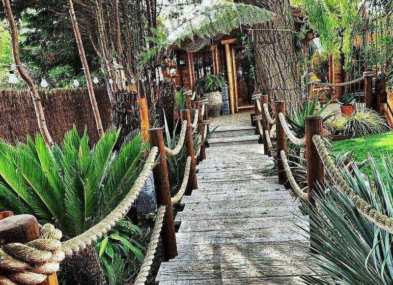 Тропический рай на заднем дворе и все ради жены крис лодж, муж и жена, необычно, райский остров, садовник-любитель, сила любви, сюрприз для любимой, тропики у дома