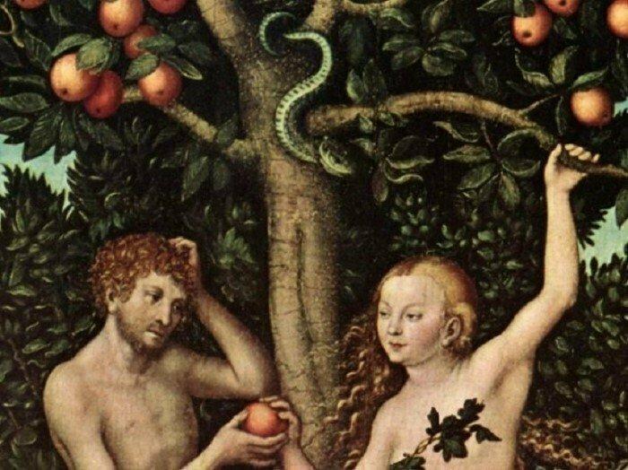 В Библии нет упоминания о яблоке, съеденном Адамом и Евой. В ней только упоминается плод с определенного дерева интересно, факты, фото