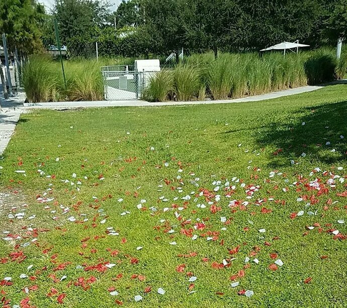 Парень 2 часа убирал пластиковые лепестки, которые кто-то разбросал на своем празднике