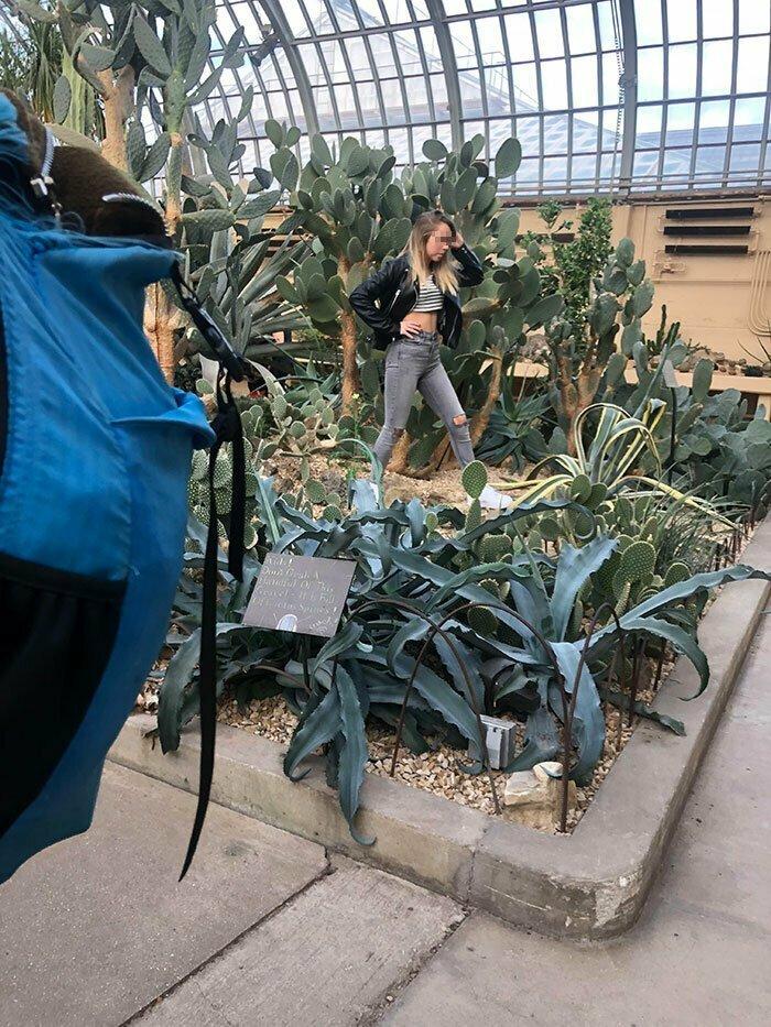 Девушка продолжала фотографироваться среди кактусов в оранжерее, хотя персонал несколько раз попросил ее прекратить