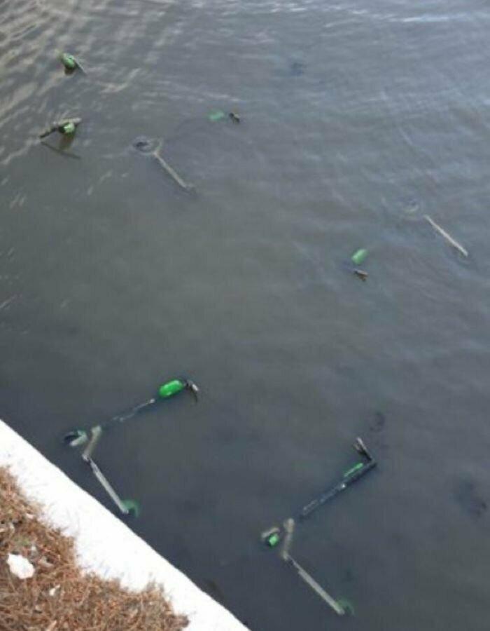 Кто-то выкинул городские электрические самокаты в реку
