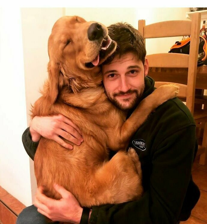 """""""Мой будущий муж и мой пес подружились, и это круто"""" домашние животные, истории, питомцы, ситуации, собака - лучший друг, собака друг человека, собаки, фото"""