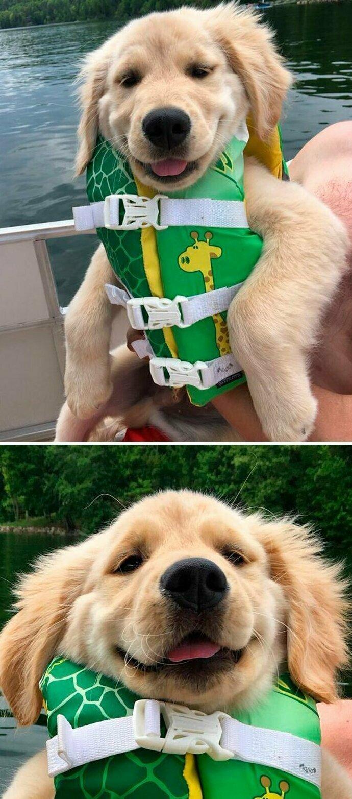 """""""Это Тед. Сегодня он впервые катается на лодке. Надеюсь, вам нравится его спасательный жилет с жирафом. Он сам его выбрал"""""""