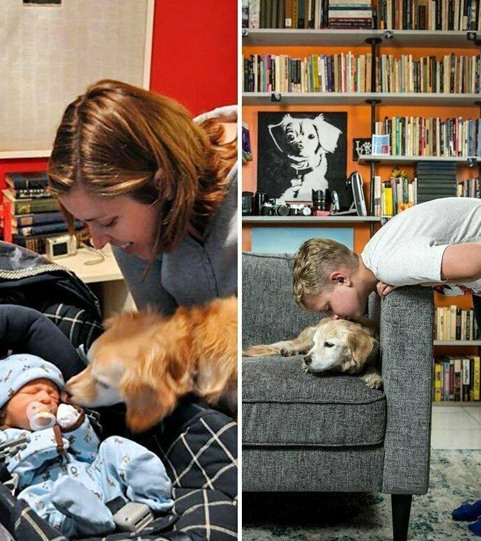 Как летит время! домашние животные, истории, питомцы, ситуации, собака - лучший друг, собака друг человека, собаки, фото