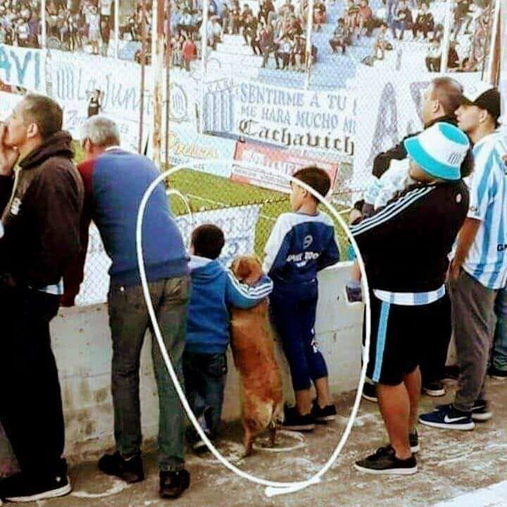 Отправляясь на стадион, не стоит концентрироваться только на игре