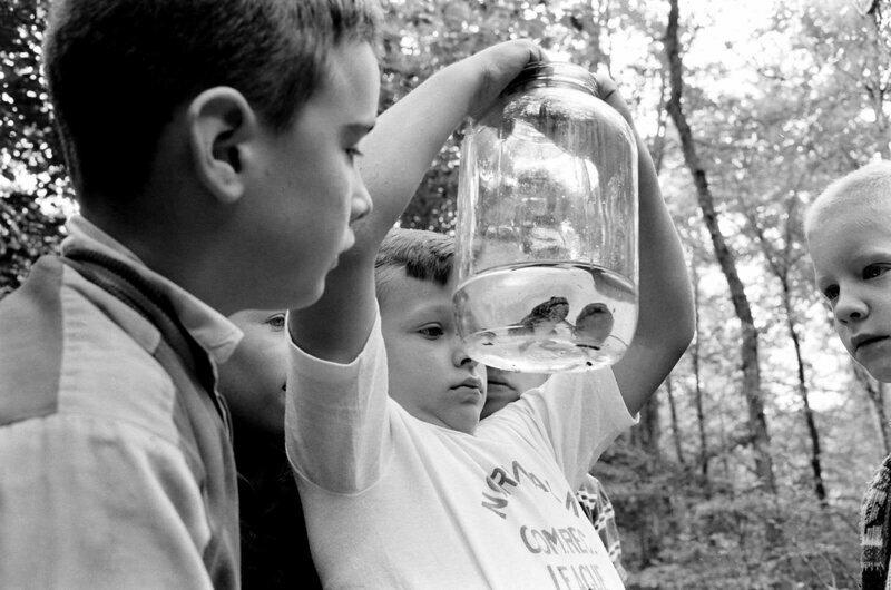 Дети поймали лягушек и рассматривают их, 1963 г.