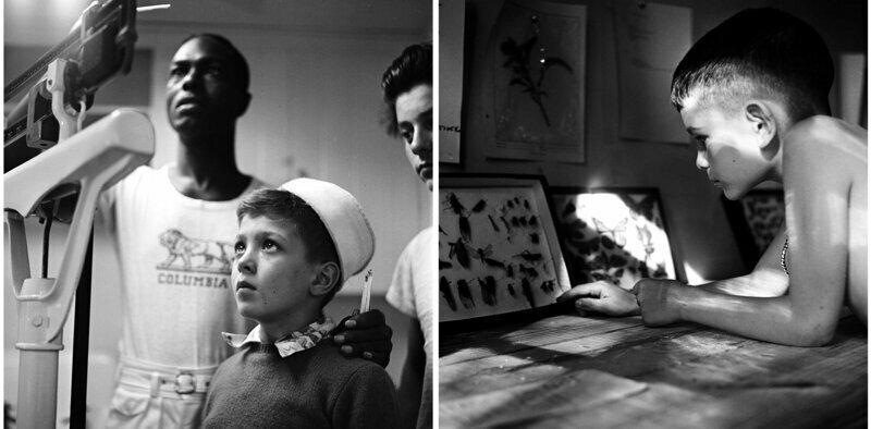 Ребенок на медосмотре. Мальчик рассматривает коллекцию бабочек. Лагерь Генри, Нью-Йорк, 1948 г.