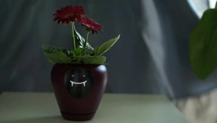 Технологии превращают комнатные растения в тамагочи