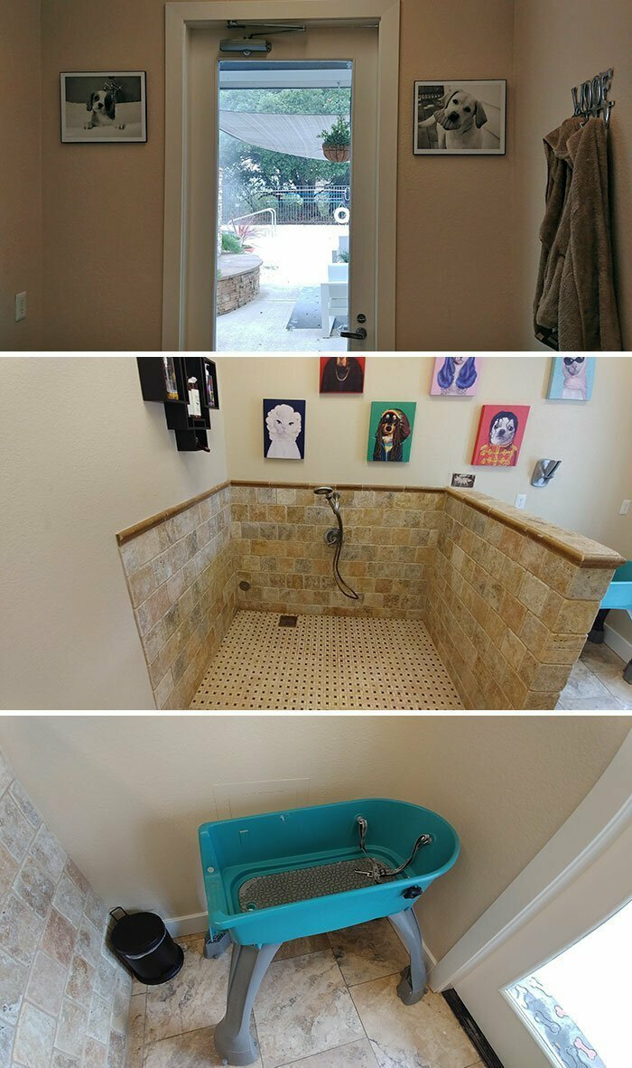 """""""Я постоянно пользовалась бесплатным полотенцем у бассейна в гостевых апартаментах, пока мне не сказали, что это полотенца для собак"""""""