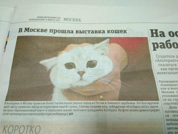 Все прекрасно, когда в газете работает фотограф ОТ БОГА