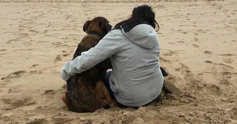 Хоспис для брошенных собак: медсестра даже на пенсии нашла способ помогать нуждающимся