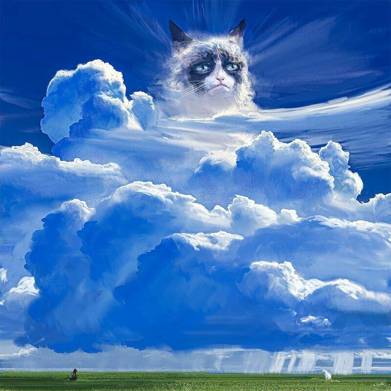 Мемасные коты маслом