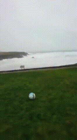 Осторожно, ветрено!
