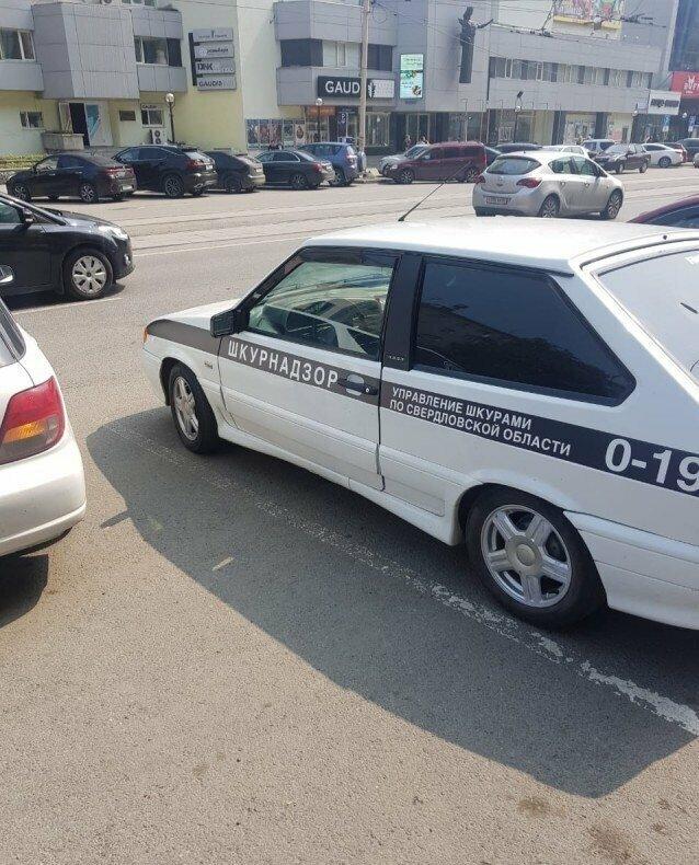 Молодежь, что тут сказать... автомобиль, маразмы, машина, перебор, прикол, смех, тюнинг, юмор
