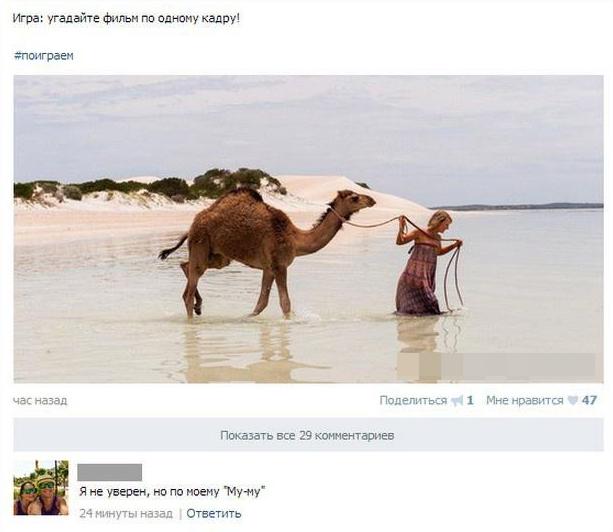 Бедный верблюд