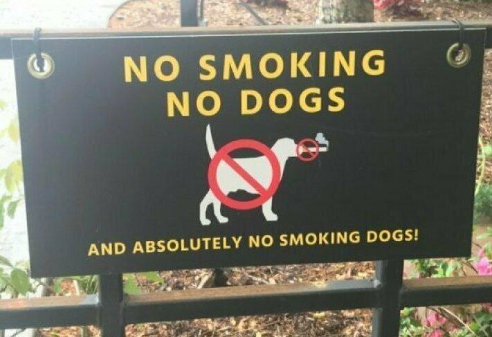 Где аналогичная табличка для курящих котов?