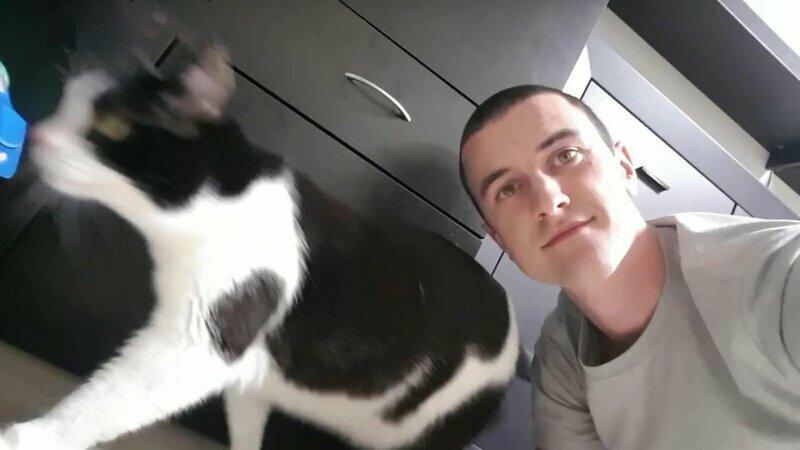 Девайс для удачного селфи с вашим любимым котиком