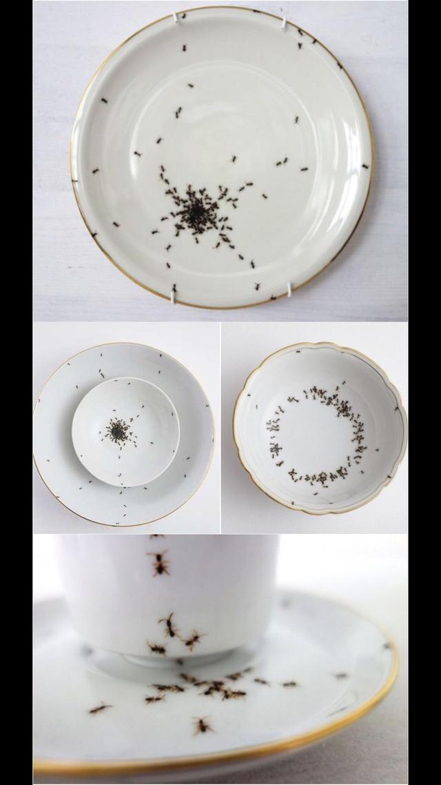 Из такой посуды и есть не захочется. Она идеальна для тех, кто желает похудеть