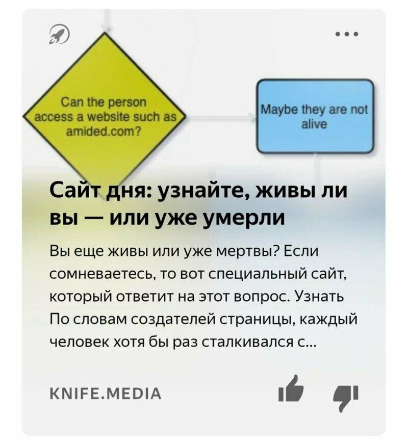 Яндекс.Дзен фигни не посоветует